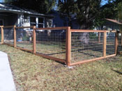 Fence of Cedar and hog wire
