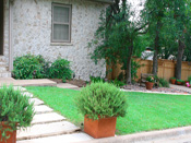 Small Austin yard with spacious landscaping